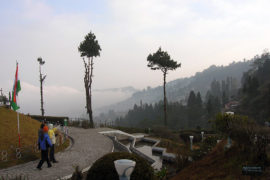 Ooty tour packages